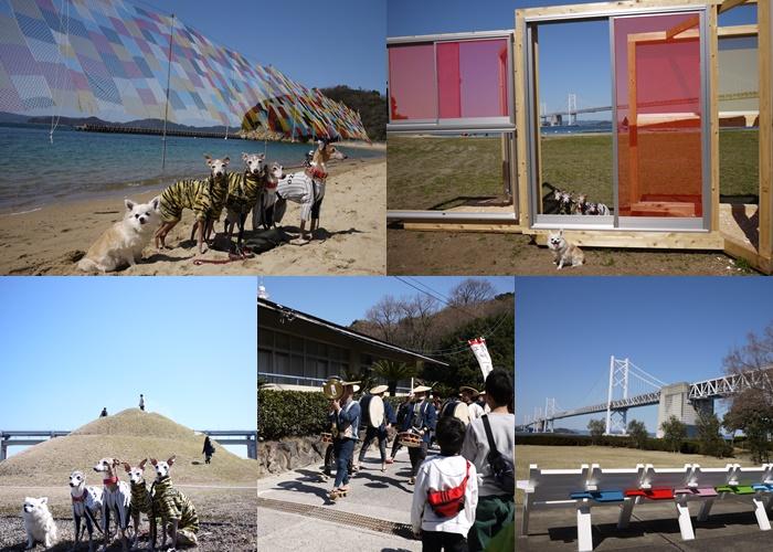 syamijima160321.jpg