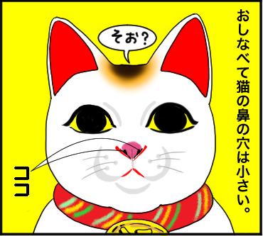 ネコの鼻1