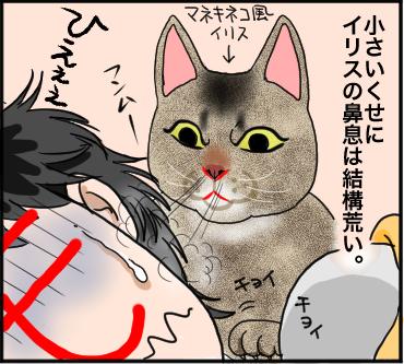 ネコの鼻2
