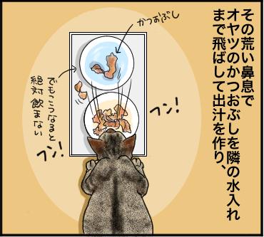 ネコの鼻息3