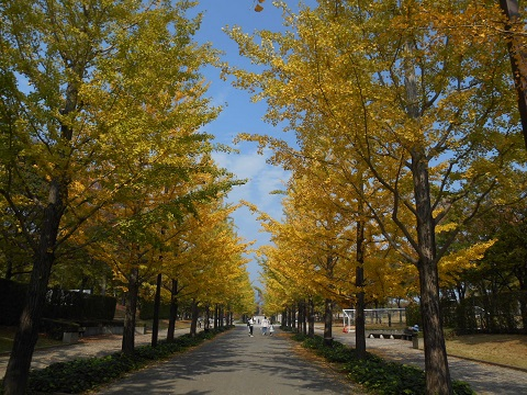 blog3_20151024210432f22.jpg