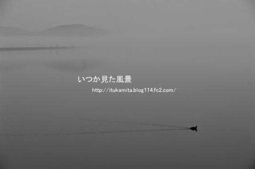 DS7_6866wi-ss.jpg