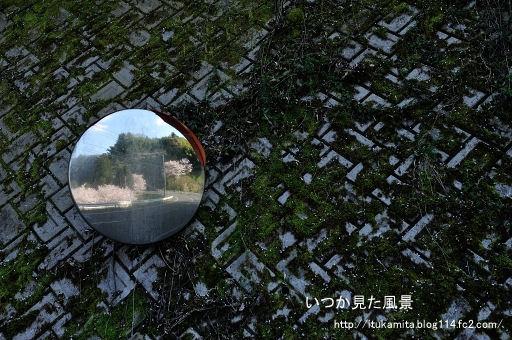 DS7_9227ri-ss.jpg