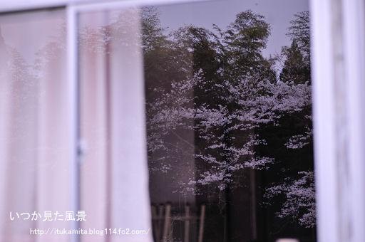 DS7_9807ri-ss.jpg