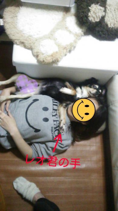 rakugaki_20151209081452554_convert_20151209115956.jpg