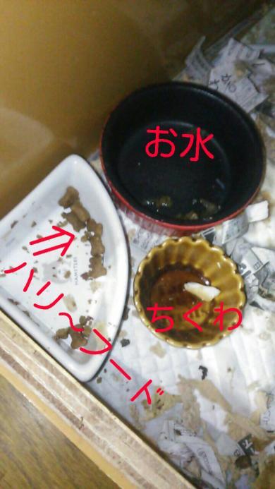rakugaki_20151210085032566_convert_20151210095440.jpg