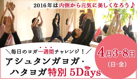 アシュタンガヨガ・美しいハタヨガ 特別5Days  アナオヨウコ 京都ヨガ・IYC京都