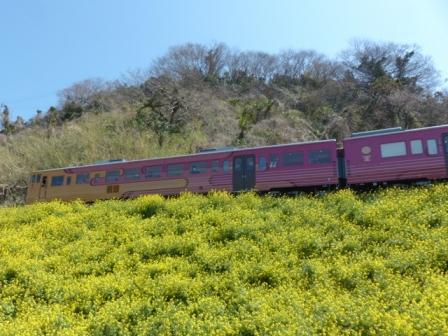 観光列車 「伊予灘ものがたり」 1