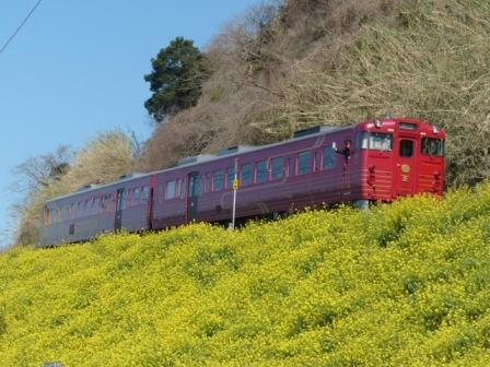 観光列車 「伊予灘ものがたり」 4
