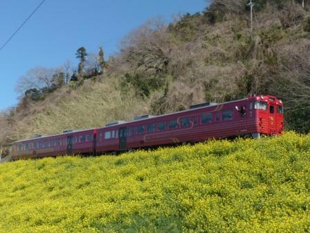 観光列車 「伊予灘ものがたり」 5