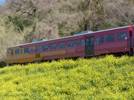 観光列車 「伊予灘ものがたり」 6