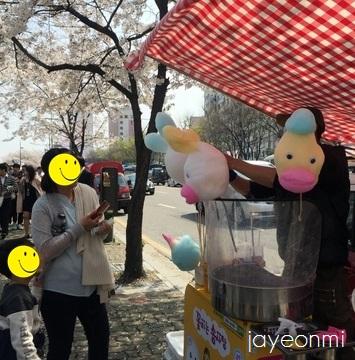 漢江公園_桜_2016年4月 (2)
