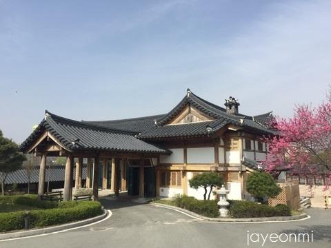 慶州_さくらマラソン_2016年 (14)