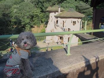あけぼの子どもの森公園20150922-7