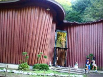 あけぼの子どもの森公園20150922-10
