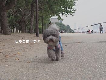 お台場さんぽ20151010-2
