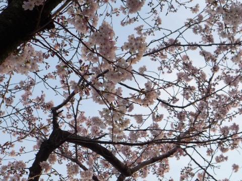 16-04-01-F02.jpg