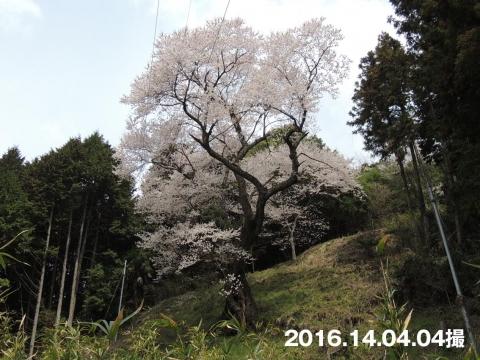 16-04-10-F09.jpg