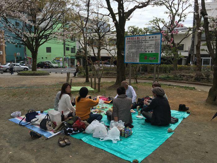 静岡のんべえお花見会2016