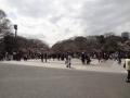 上野公園26日