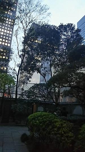 将門様の首塚 敷地