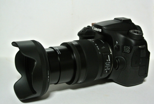17-70mm F2.8-4 DC MACRO OS HSM 10