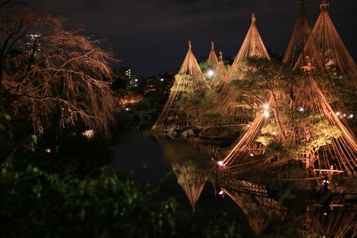 2015 白鳥庭園 紅葉 夜 08