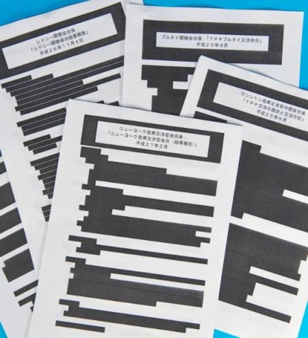 TPP-Kuronuri_20160405_Chunichi.jpg