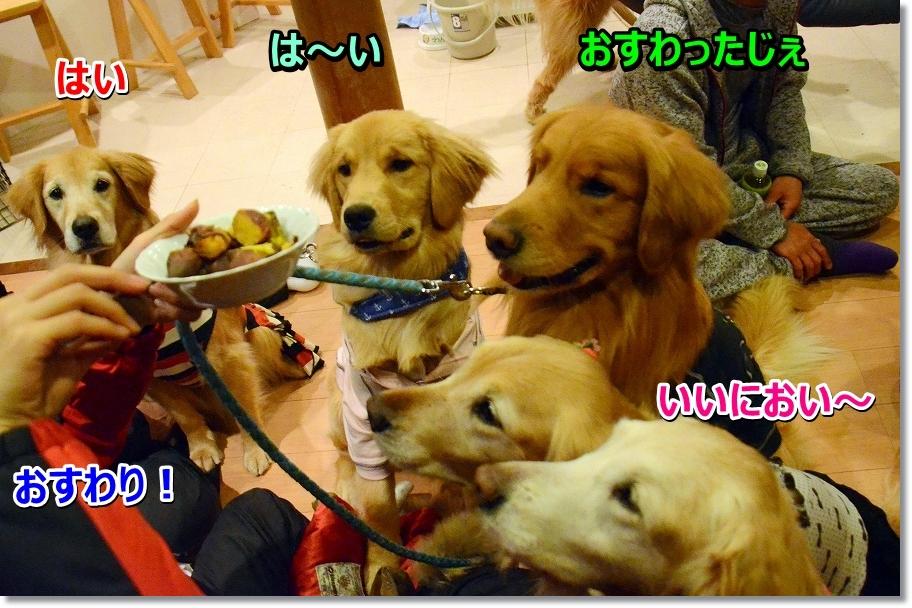 DSC_2786yakiimo.jpg