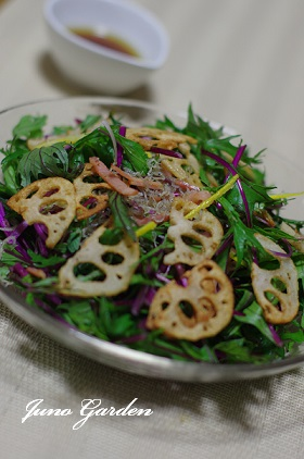 赤水菜のサラダ1516