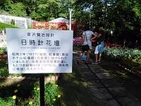 2015-09-19-秋バラ園ー273