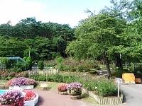 2015-09-19-秋バラ園ー299