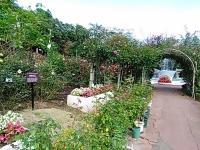 2015-09-19-秋バラ園ー319