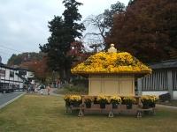 中尊寺菊祭り2015-10-31-001