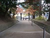 中尊寺菊祭り2015-10-31-009