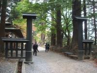 中尊寺菊祭り2015-10-31-021