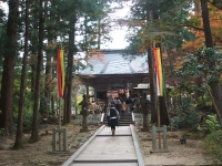 中尊寺菊祭り2015-10-31-024