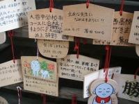 中尊寺菊祭り2015-10-31-032