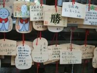 中尊寺菊祭り2015-10-31-031