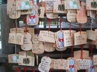 中尊寺菊祭り2015-10-31-030