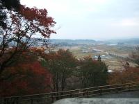 中尊寺菊祭り2015-10-31-035