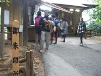 中尊寺菊祭り2015-10-31-044