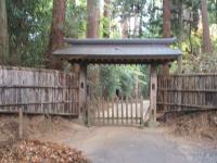 中尊寺菊祭り2015-10-31-043