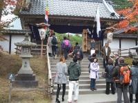 中尊寺菊祭り2015-10-31-059