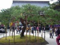 2015-11中尊寺ー005