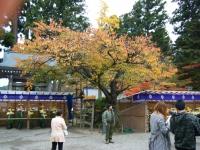 2015-11中尊寺ー016