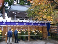 2015-11中尊寺ー018