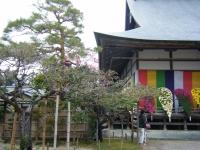 2015-11中尊寺ー025