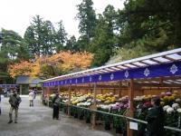 2015-11中尊寺ー036