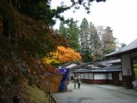 2015-11中尊寺ー044